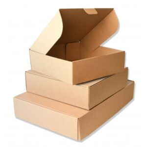 Caja-microcanal-takeaway-25x25x8cm-50u